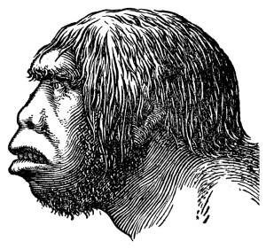 Vintage illustration of a Neanderthal head (isolated on white). Published in Systematischer Bilder-Atlas zum Conversations-Lexikon, Ikonographische Encyklopaedie der Wissenschaften und Kuenste (Brockhaus, Leipzig) in 1844.